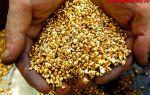 Золото Якутии: как добывают драгоценный металл в республике Саха