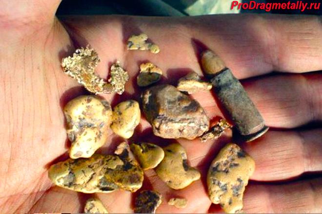 Найденные самородки золота